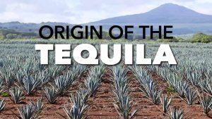 Origin of the Tequila