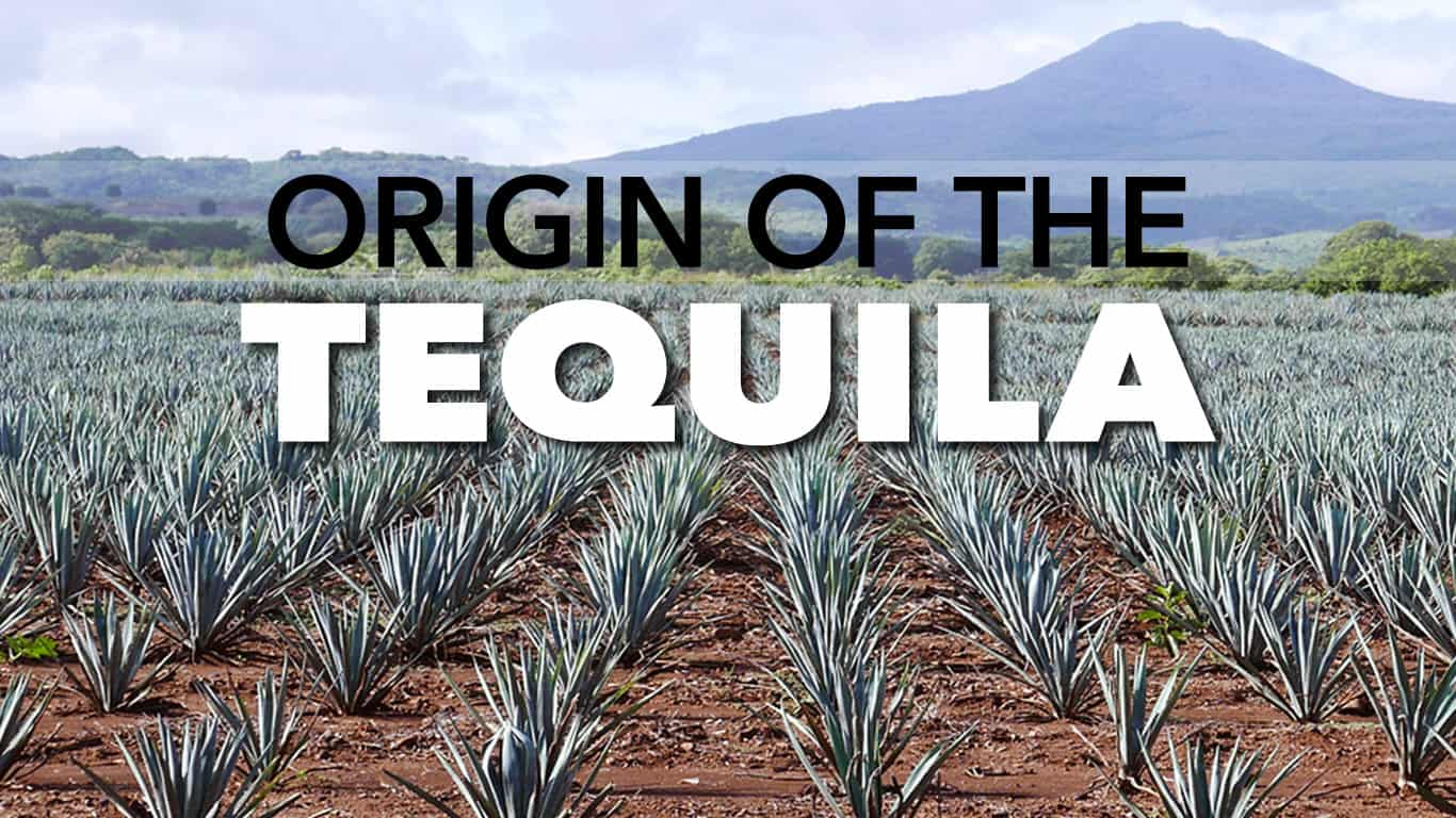 Origin of the Tequila